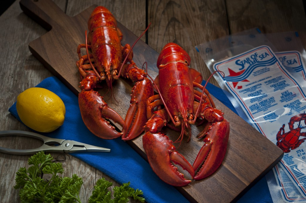 Whole Cooked Lobster Frozen in Brine Popsicles