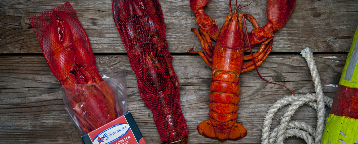 Whole Lobster Cooked/Blanched Retail Box